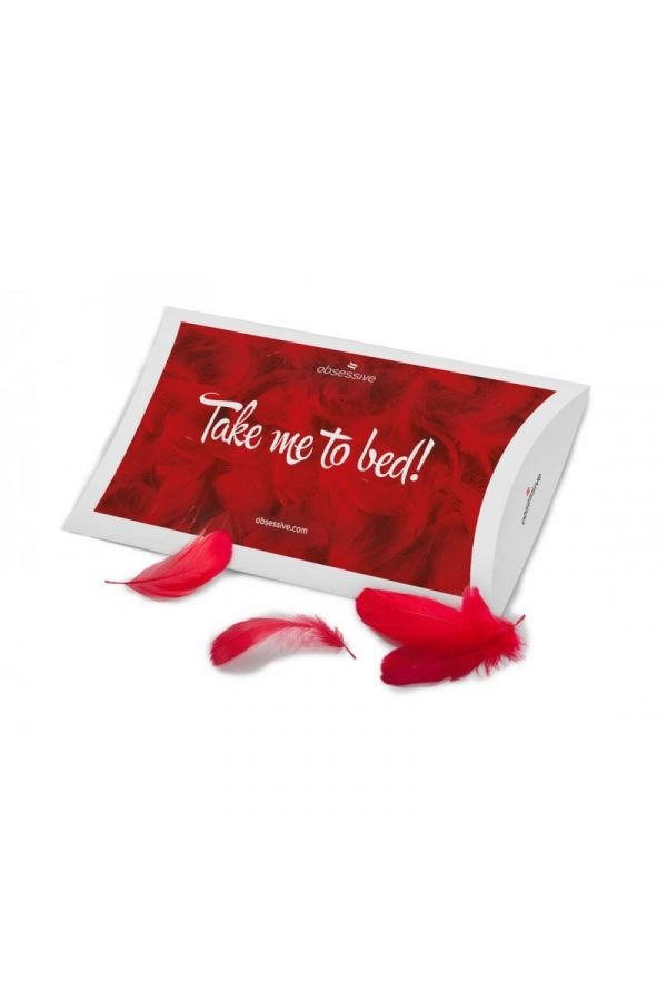 BED DECOR TAKE ME TO BED RED TES1818